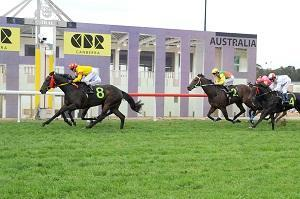 ​Our Cracker Goes Off To Win Cooma Town Plate
