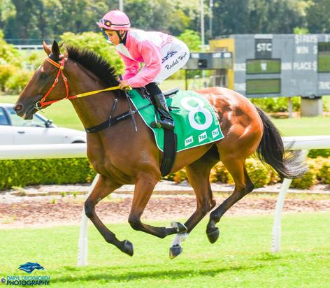Token Of Love Wins New Admirers With Sydney Success.