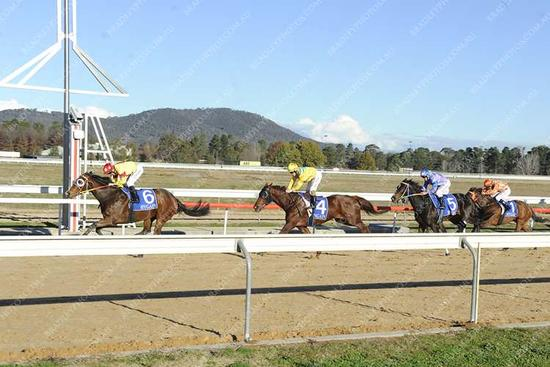 Alfden produces best to score on the refurbished Synthetic Canberra track.