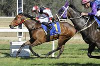 Athonis sheds maiden tag
