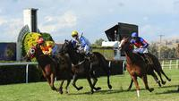 Mercurial Lad claims victory in the 2017 Snake Gully Cup
