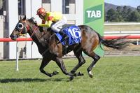 Croix De Vie sails home to win the inaugural Federal at Canberra