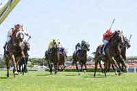Almost Court dead heats at Royal Randwick