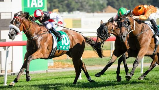 Almost Court wins Canberra Cup