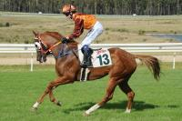 Singled Out Never In Doubt At Canberra
