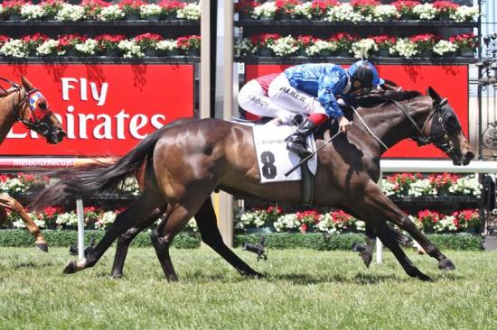 Good Carnival for Kent Stable