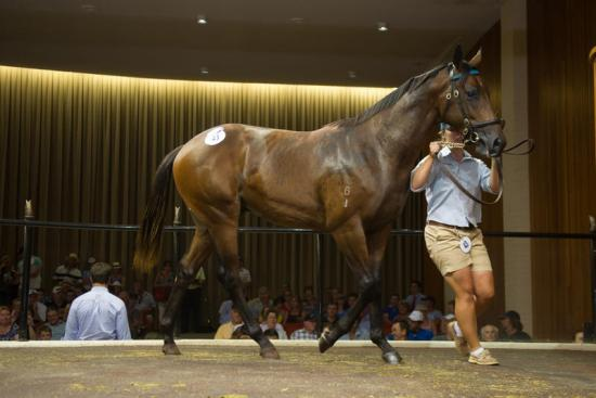 Mick secures day one sale topper