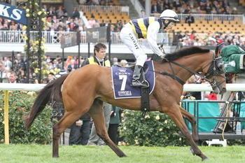 Vittoria sets scene for Sydney Cup
