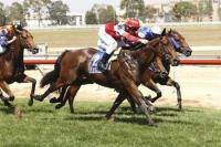 Consorting Salutes First Up