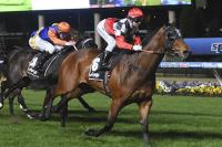 Consorting win has him ready for better races
