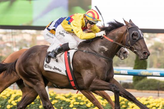 Two In A Row for Hattori Hanzo
