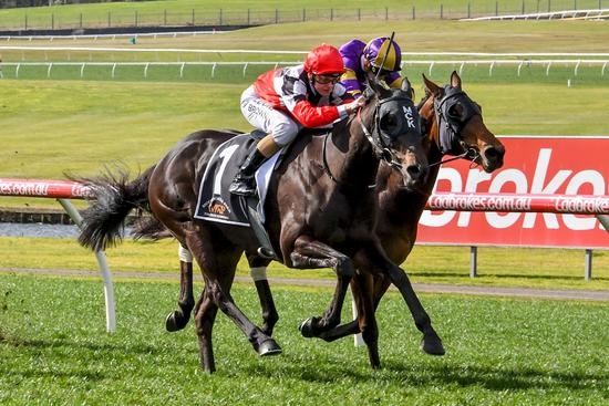 Second Sandown Success For Maraudamiss
