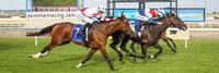 Alpha Outstays Rivals At Debut