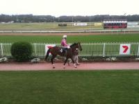 Lady Colours dazzles on debut