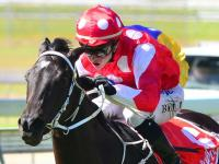 Antarctic Dream scores first metro win