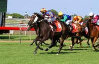 Huge stakes win for Caliente at Eagle Farm