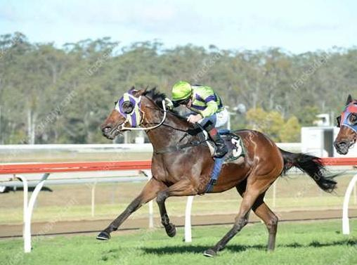 Kalandula produces impressive first up win