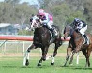 Falzini scores metro win at Ipswich