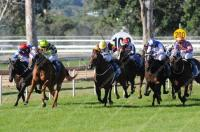 Rosenet scores easily at Beaudesert