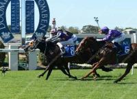 Another city win for Casarati