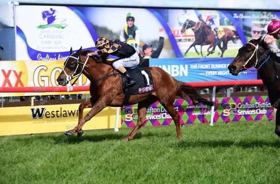 Dubawi Sniper salutes at Grafton