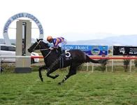 Taillevent takes out the Murwillumbah Newmarket