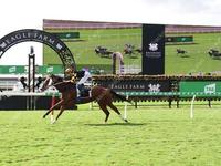 Gun Bolt triumphs at Eagle Farm