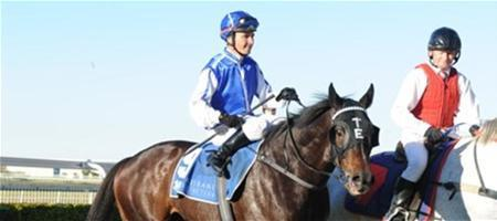 War Ends wins in Style at Doomben!