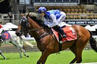 Eagle Farm victory for Bid Spotter