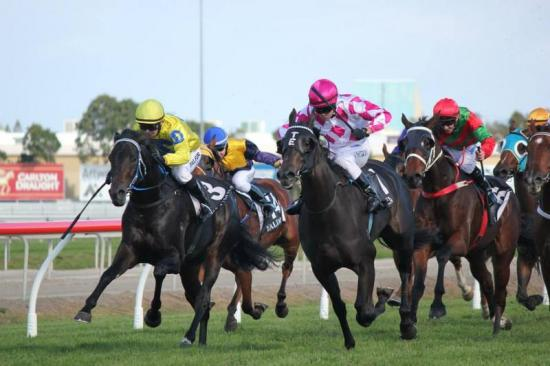 """Group One victory would be """"Amazing"""" for Zizou filly"""