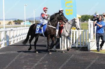 Octaraja Wins First Up
