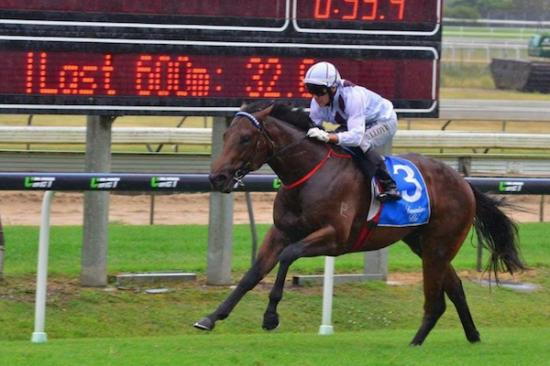 Sundance All Class in Phelan Ready Stakes Victory