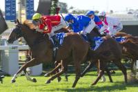 Magic Millions Aim For Sagaronne