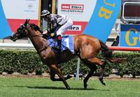 Houtzen new Magic Millions favourite