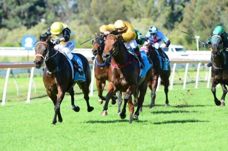 Impregnable Heads To Town