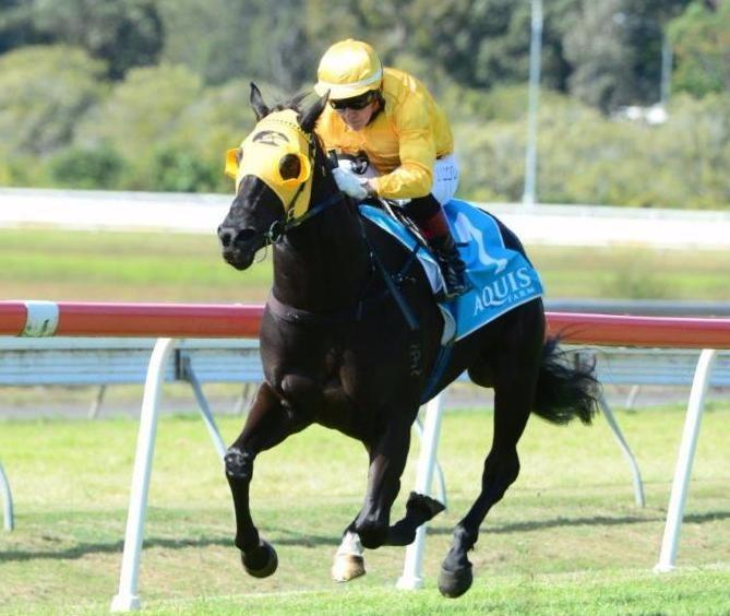 Dream Master Sheds Maiden Tag In Style