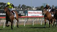 Four winners on Gold Coast push Jeff Lloyd back to top in premiership race