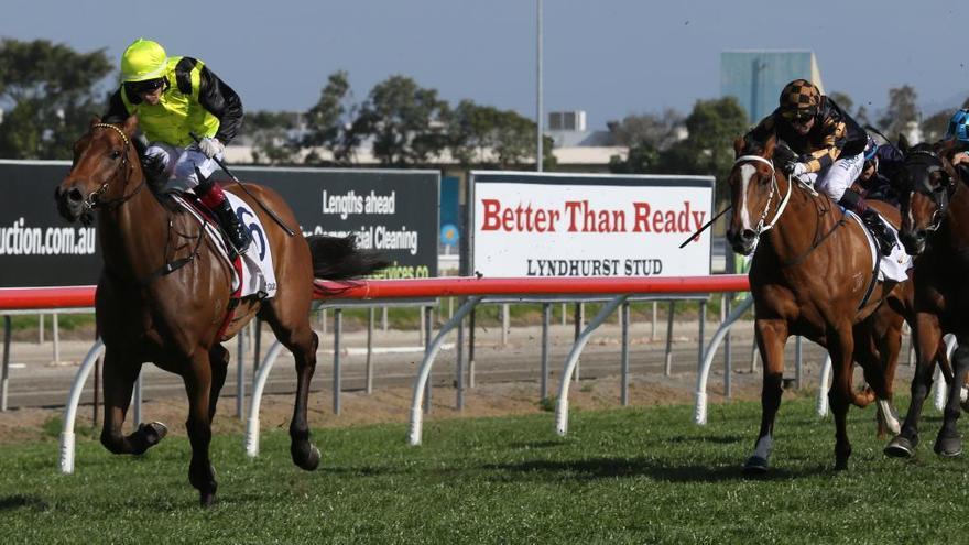 Four winners on Gold Coast push Jeff Lloyd back to top in premiership race