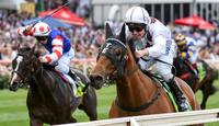 Eptimum takes on Houtzen in Coolmore