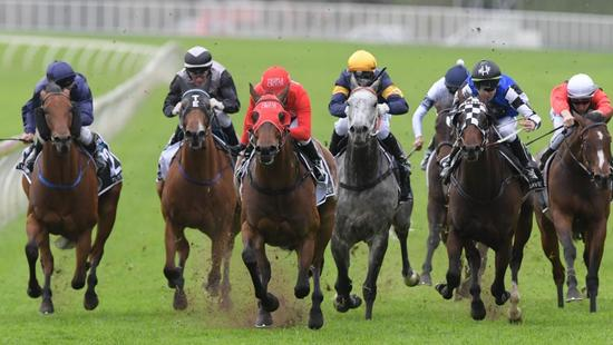 Trainer Toby Edmonds says Houtzen is likely to stick to 3YO races in the immediate future