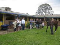 OWNERS MEETING  THEIR HORSE FOR 1ST TIME