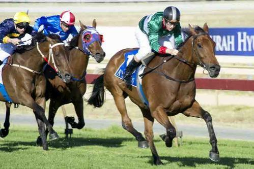 CHEQUE MATE WINS AT PINJARRA!