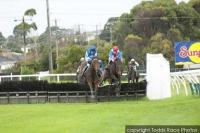 ELMS WINS AT THE 'BOOL!