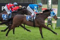 Shares For Sale-This Horse Has Run The Fastest Last 600m At BOTH Of His Last Two Starts!