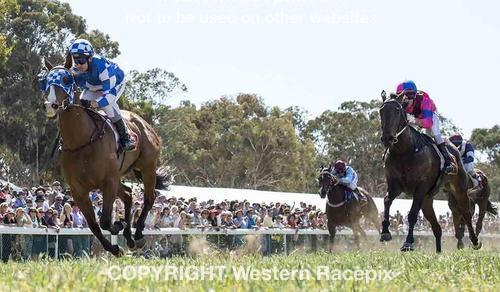 Our Pie 'O' My Wins At Toodyay!