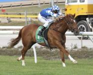 STRIDE OUT WINS AT MOE!