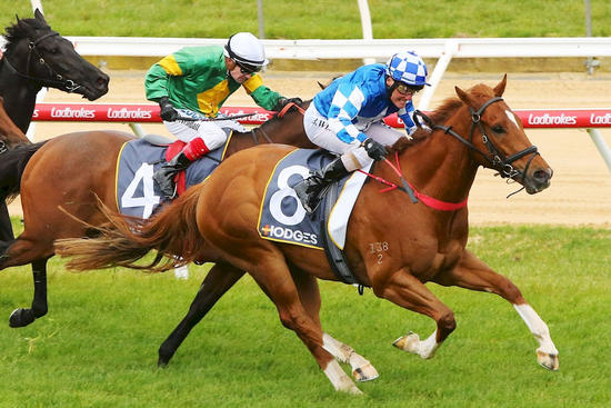 Stride Out Wins at Mornington!