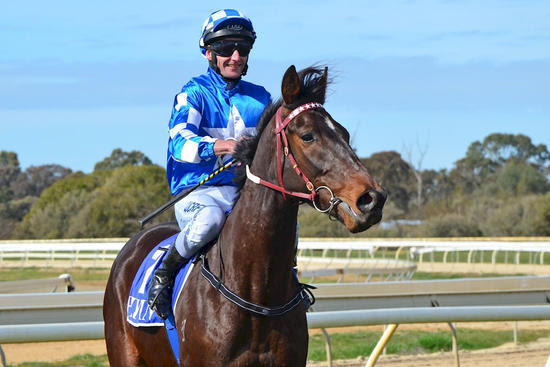 NAVY BLUE WINS AT ECHUCA!