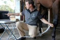 CROWN EQUINE VETERINARY SERVICES - DR BEN MASON.jpg