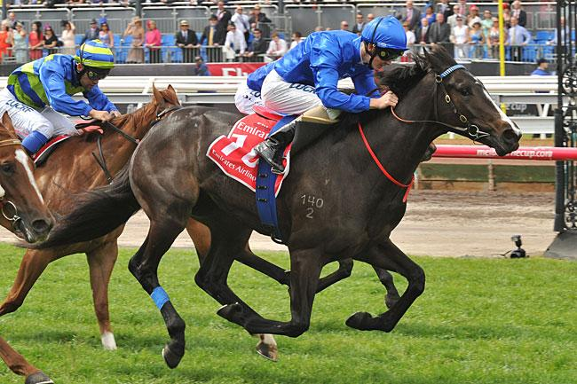 How to win Black Type Races  - Buy a Domesday Filly!!
